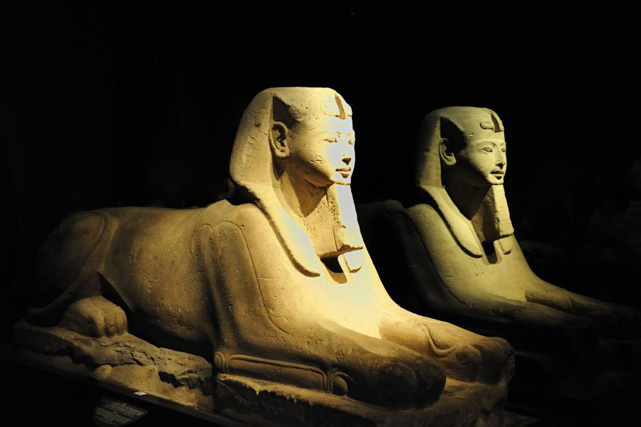 Sphinx in Turin's Egyptian Museum