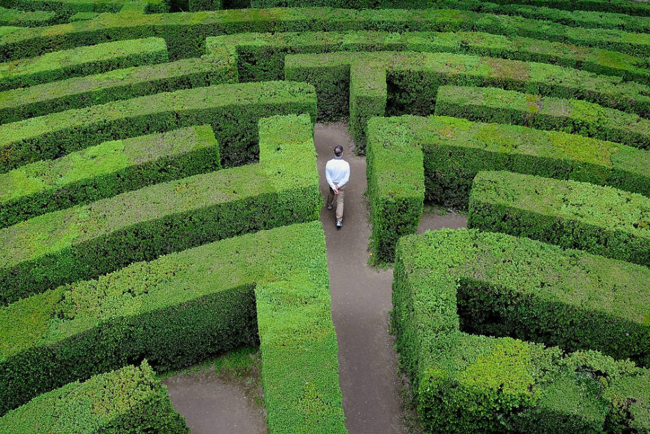Labyrinth of Villa Pisani