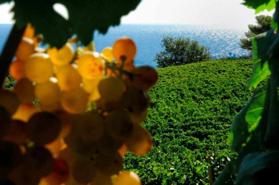 Riviera Ligure di Ponente.