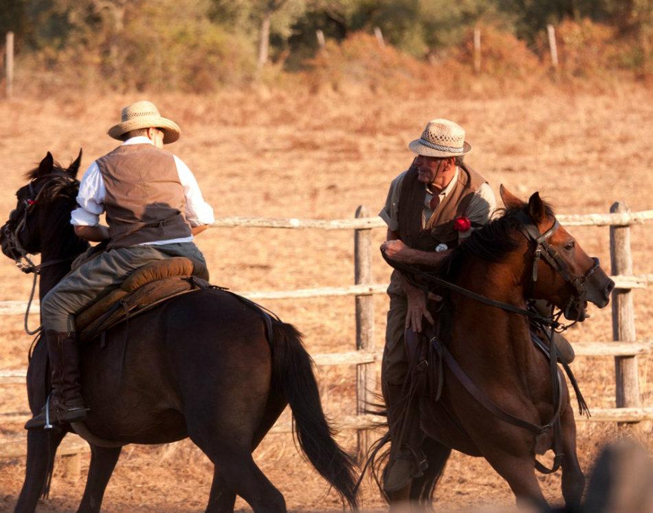 Horses of the Maremma - © Elisa Scarton Detti