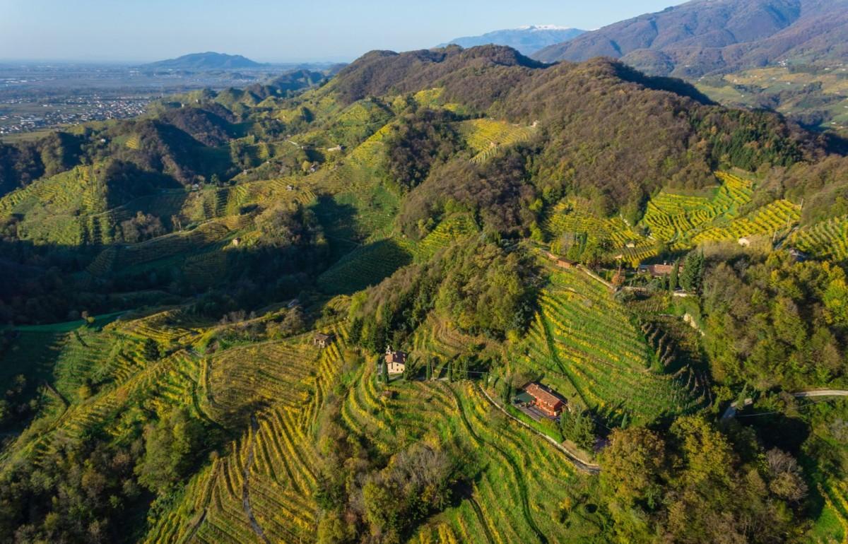 Valdobbiadene vineyards - courtesy of Bortolomiol Winery