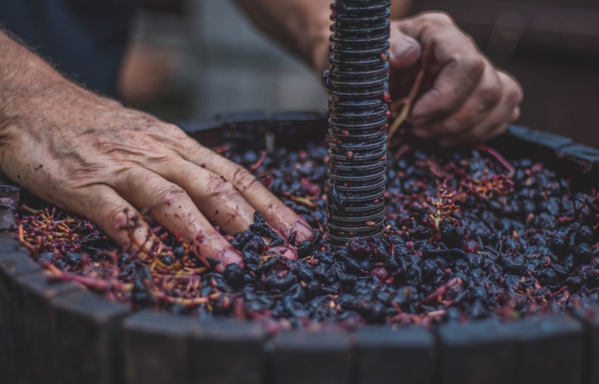 Pressing Grapes - by Bianca Isofache