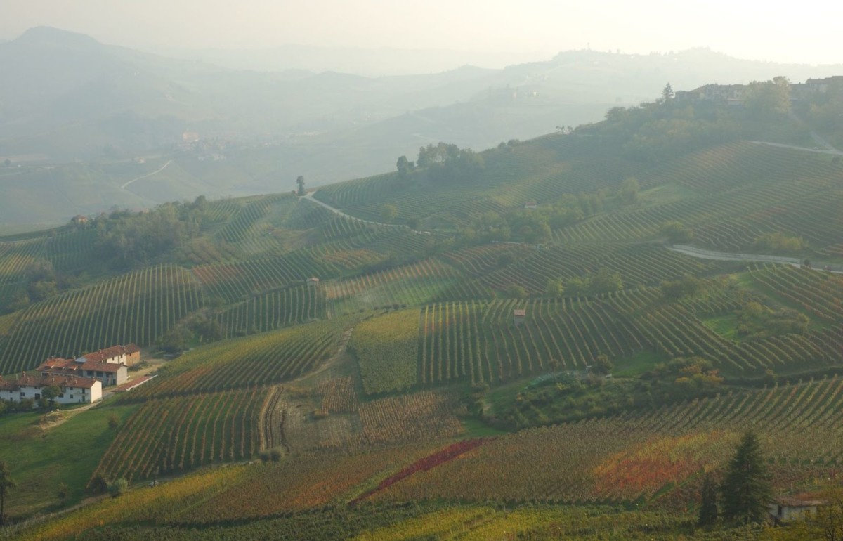 24 Hours in Italian Wine Region | What to do, see and eat in