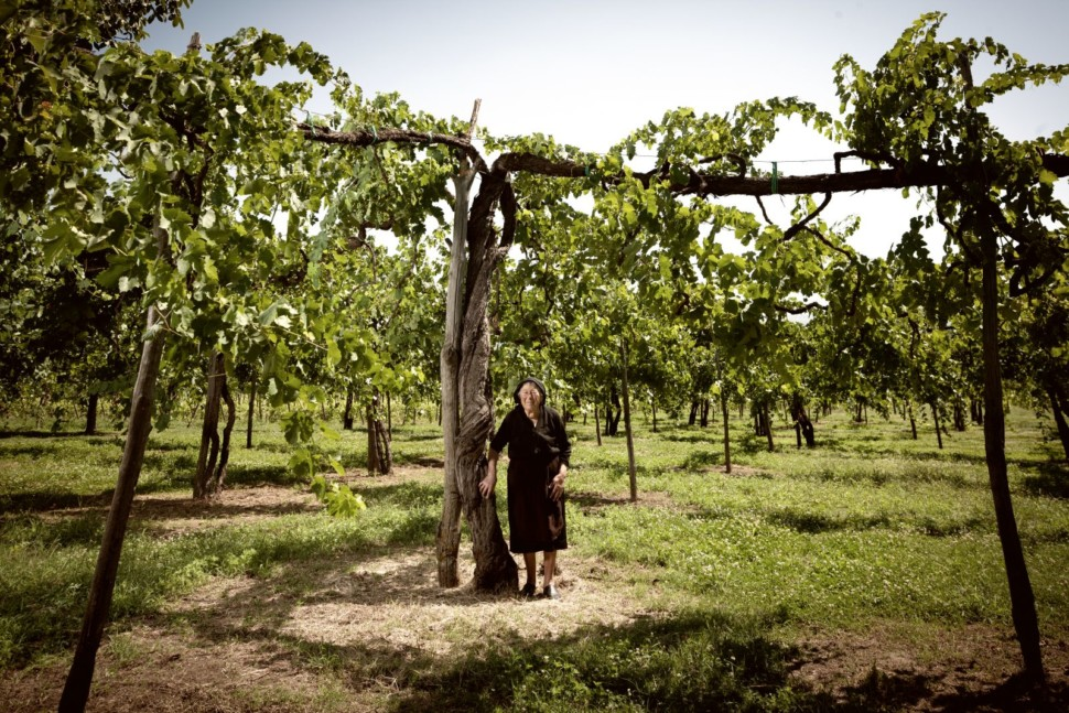 An elderly woman, dressed in all black, stands in front of an ancient vine