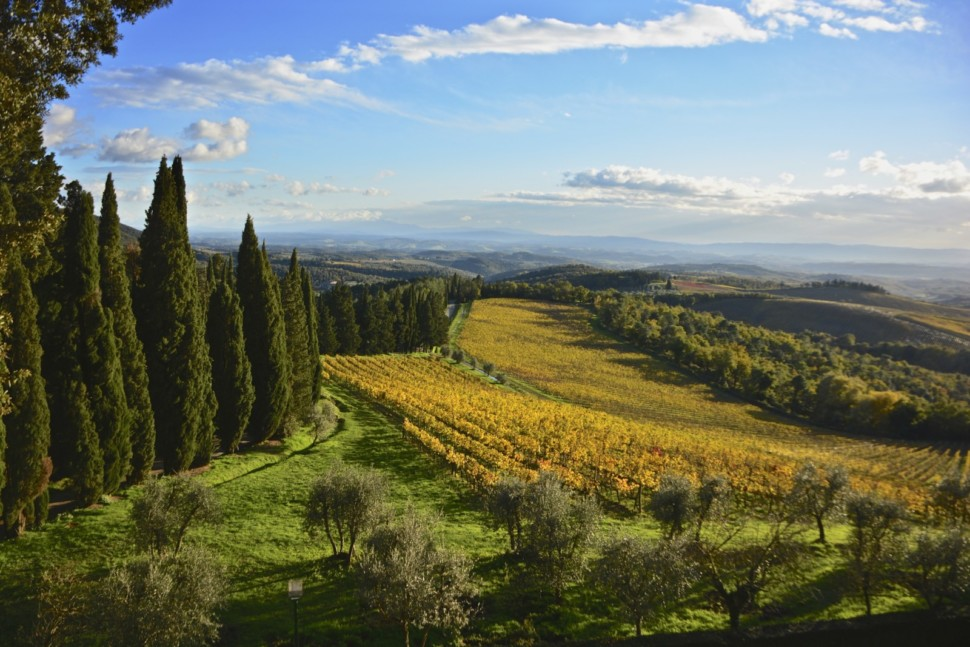 tuscany is a top italian wine region