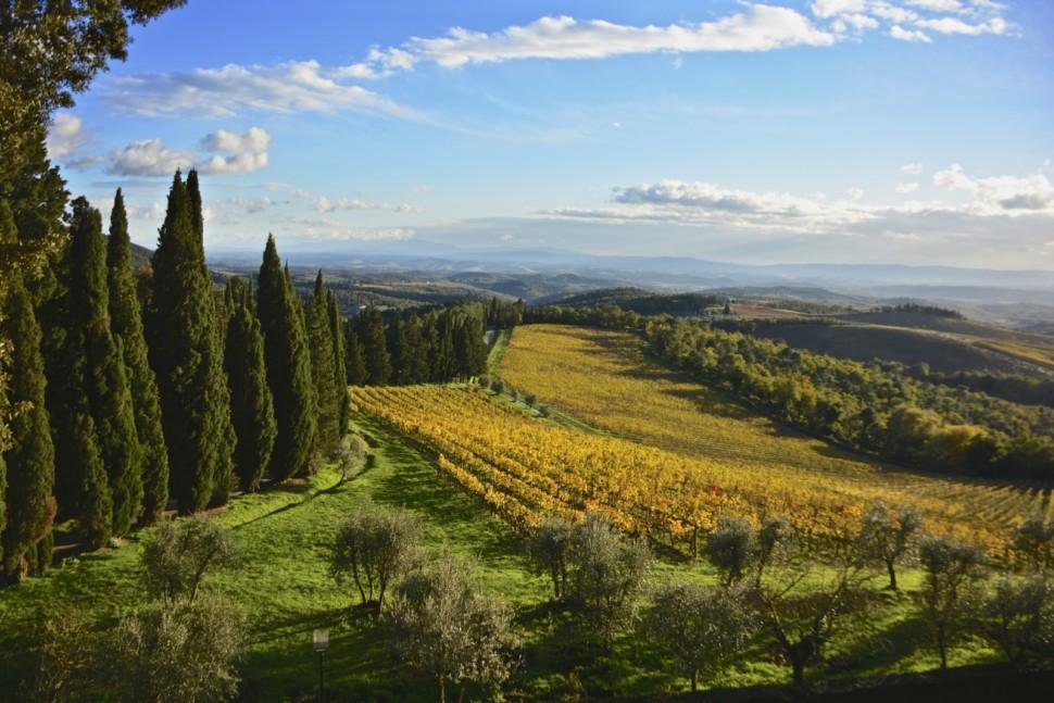 tuscany is a top italian wine region
