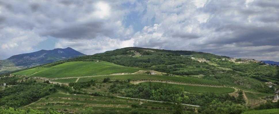 valpolicella veneto wine region