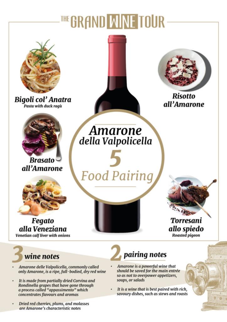amarone food pairing infographic
