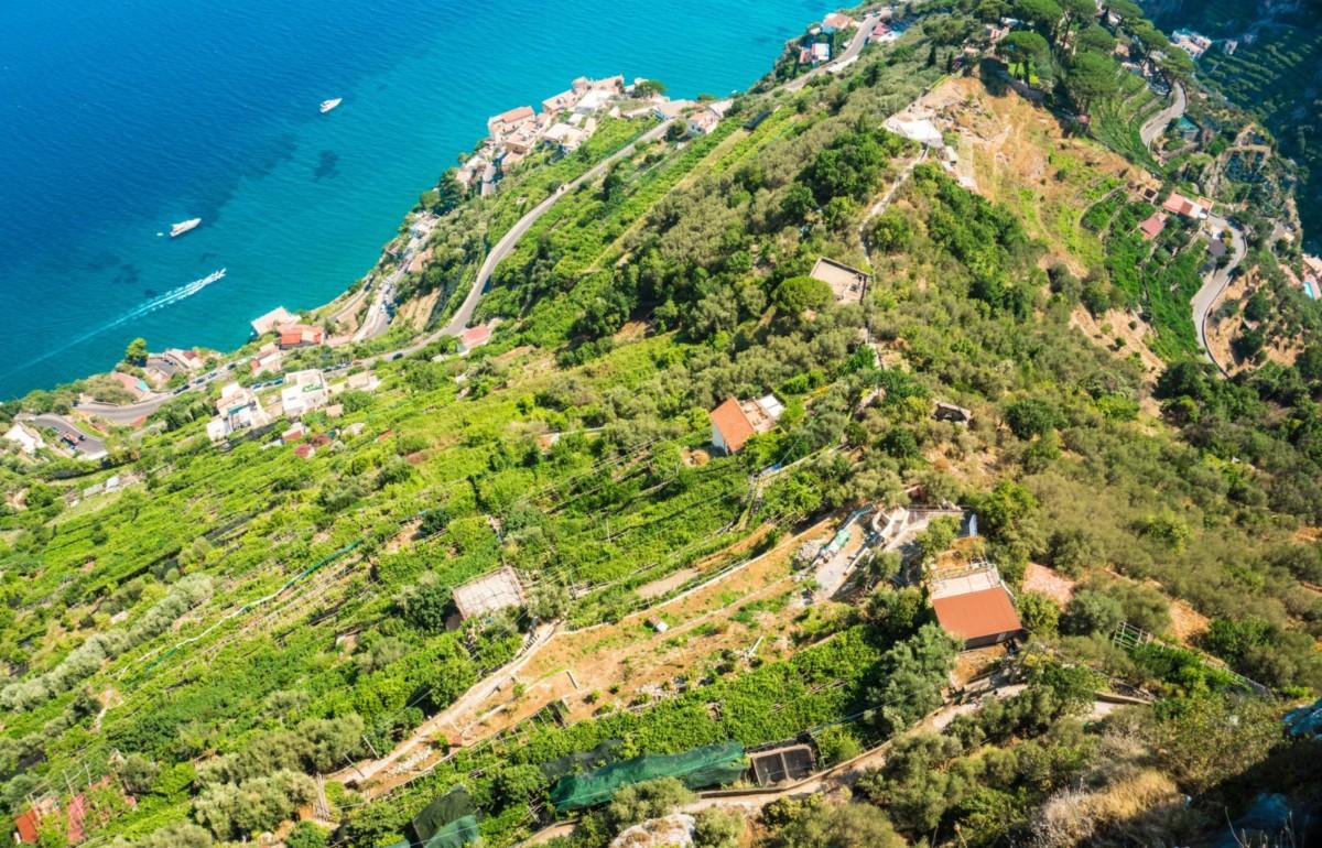 cover furore wine to sea